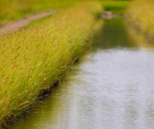 La nostra terra, un'oasi in città